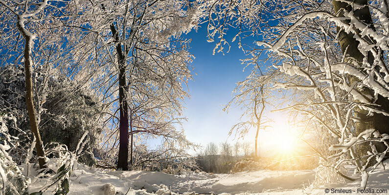 Zimowy pejzaż.